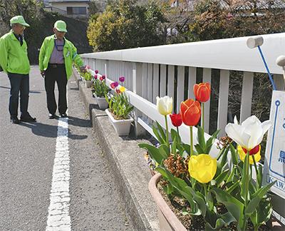 色鮮やか 花の架け橋