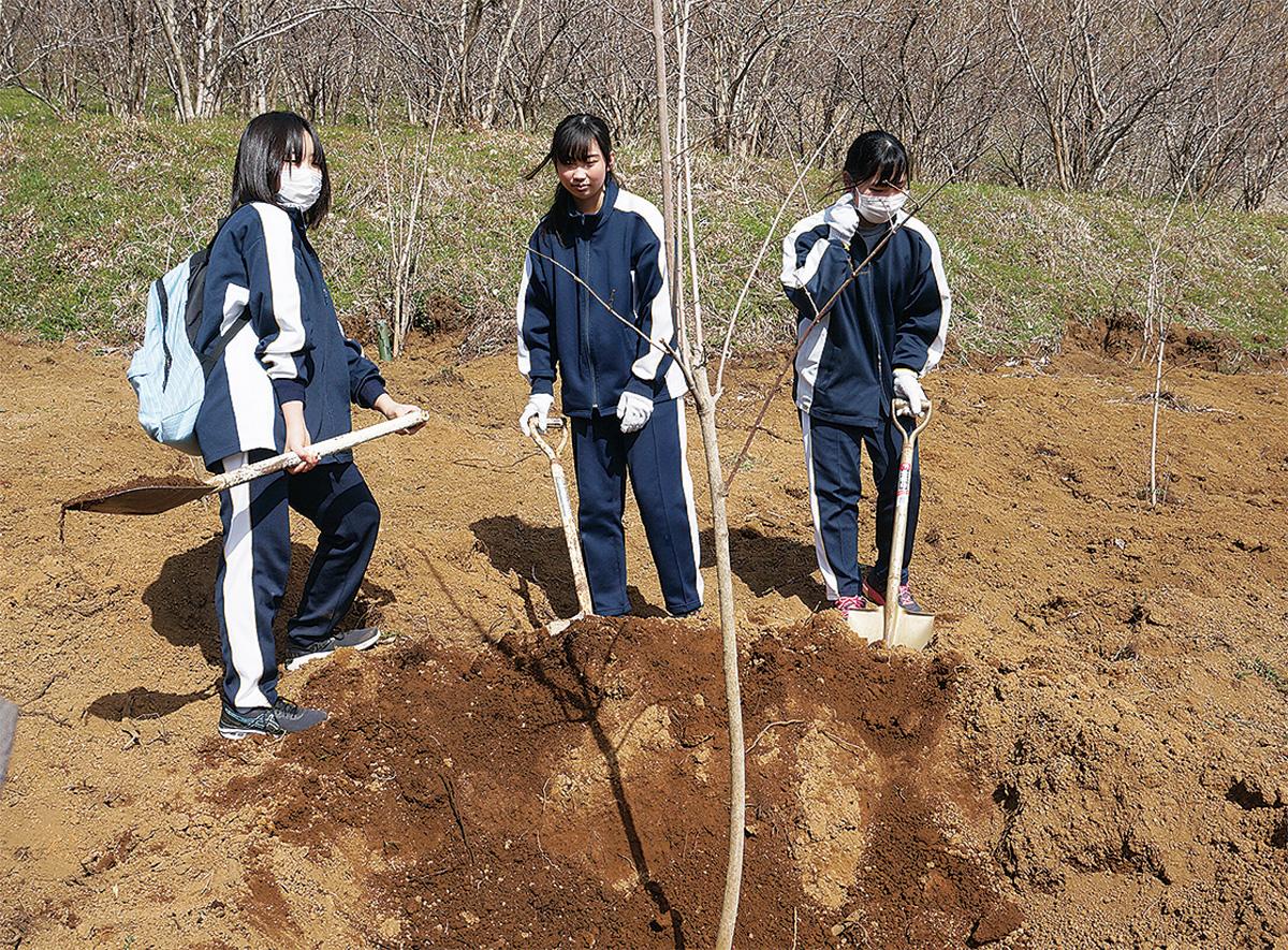 ロウバイを記念植樹