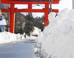 両脇に積まれた雪(元箱根)
