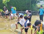 まなづる小5年生の保坂陸来(りく)くん(10)と高橋優斗くん(10)は田植え体験を「土が柔らかくて気持ち良かった」「動きづらかった」と振り返った。