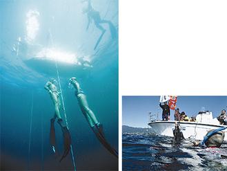 透き通る真鶴の海中と水面の大会風景=久保誠さん撮影
