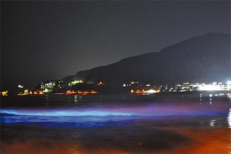 波が崩れた衝撃で青い光を放つ 背後は伊豆山
