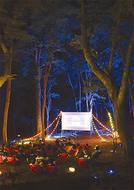 虫の音響く 森の上映会
