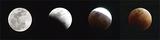 皆既月食仰ぎヨガ