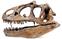 真鶴に恐竜標本