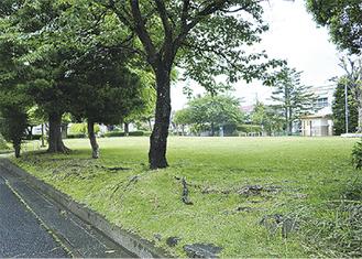 建設予定地の若宮公園