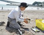 吉浜や岩海岸で採取