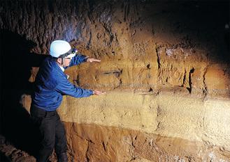 職員が手を広げる部分が火砕流の地層。その下の層が「箱根東京軽石層」