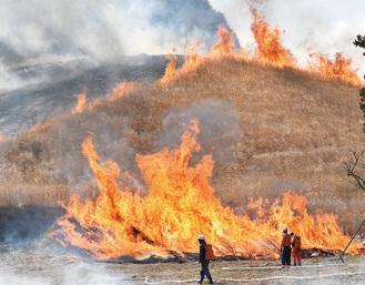 草原を囲む炎 水を背負った消防団員が見守る