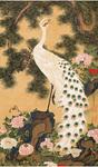 伊藤若冲「孔雀鳳凰図」のうち孔雀図(部分)江戸時代 宝暦5年(1755)頃 岡田美術館蔵