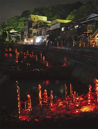 千歳川に光の竹林