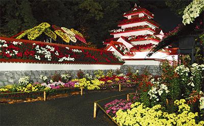 3000鉢で菊の城
