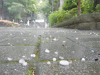 箱根の路上、雹(ひょう)踊る