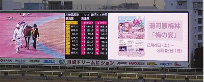 川崎競馬で「梅の宴」冠レース