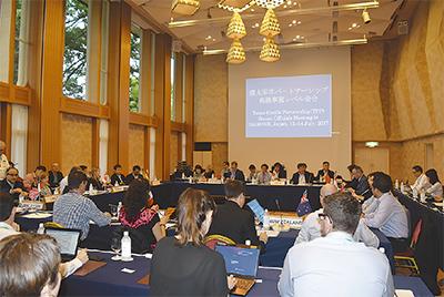 TPP11ヵ国会合