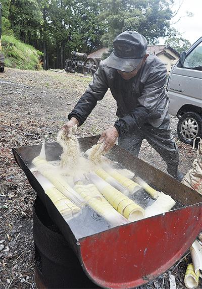タケノコ温泉茹で