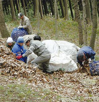 手作業で枯葉を除去する参加者。秦野市では地下水に配慮し、薬剤を使わないヤマビル対策を提唱しており、今後も定期的に実施する予定
