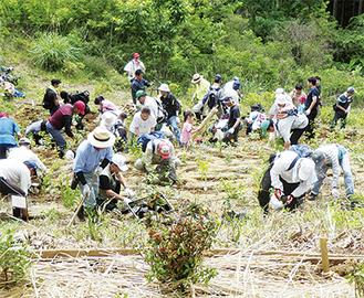 幅広い年齢層の市民が参加。心を込めて緑を植えた