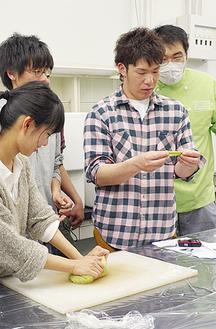 よもぎパンの試作を行う藤吉ゼミの学生