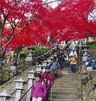 紅葉が覆う大山寺の階段