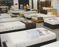日本ベッド新作フェア開催中
