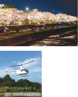 桜のライトアップ(昨年)とかながわ自主防災航空のヘリ
