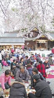 桜の下、集い語らう参加者