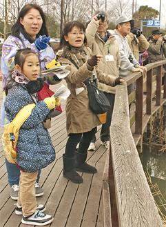 双眼鏡を覗きながら野鳥を観察する参加者ら
