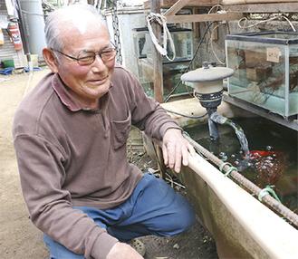 金魚の様子を見る柳川さん
