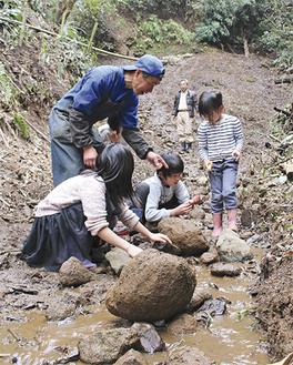 子どもにサワガニの捕り方を教える小野さん