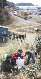 千葉さんが津波から逃れるため登った裏山。千葉さんや残りのメンバーが見守る中、津波到達点に桜を植えた