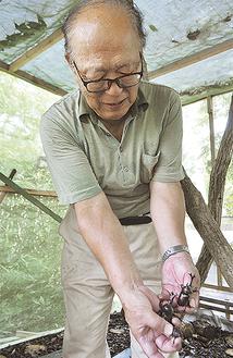 カブトムシを持つ木頭さん