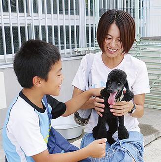 神奈川県動物保護センターのふれあい動物ひろば。センターで暮らす犬が見学者の膝に乗ってきた