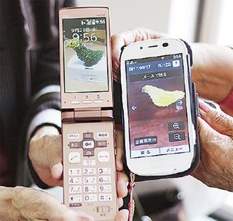 """川口さんと高橋さんの携帯電話には""""ひよこニガウリ""""の写真が"""
