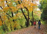 山岳ガイドと秋体験