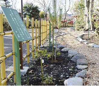 30種類の植物や和歌を紹介する「波多野金槐植物苑」