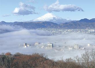 12月25日の雲海に浮かぶ富士(橋本さん撮影)