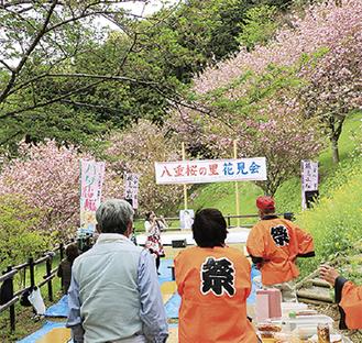 満開の桜の前でステージを見る人たち