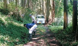 調査が行われた林道