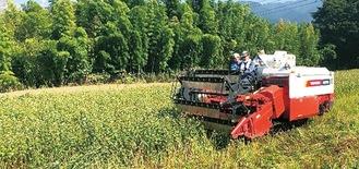 大型機械を導入し一気に収穫