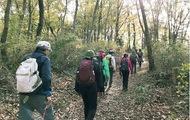 秋の紅葉低山登山