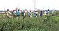 善波川で生き物採集