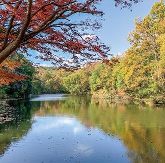 国登録記念物として答申された震生湖