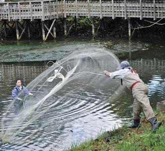 引き網で捕獲する内水面試験場職員