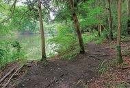 震生湖の散策道整備へ