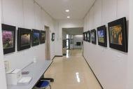 秦野市立東公民館で写真展