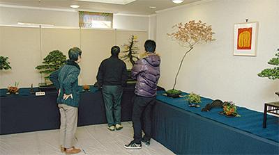 新春盆栽展が盛会