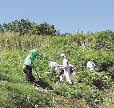 荒廃地から農地を復元