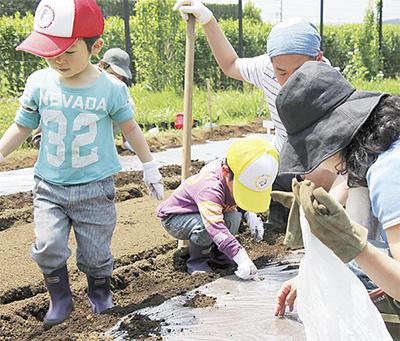 親子で楽しむ農作業