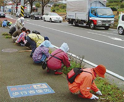 南地区婦人会が県道清掃